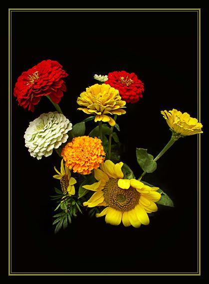 http://www.altaionline.ru/photo/90_P8220016a.jpg